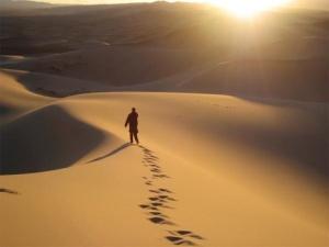 lost in desert